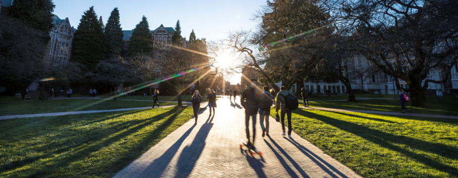 A low winter sun casts long shadows as students walk through the quad