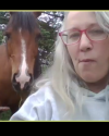 Horse visitor interrupting Gina's Zoom meeting
