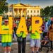 Protestors holding up the letters LIAR in front of the White House.